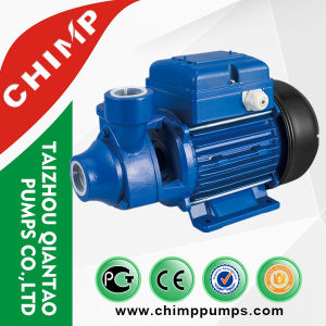 Chimppumps 1.0HP Silient Uso doméstico de la bomba de agua potable fabricado en China