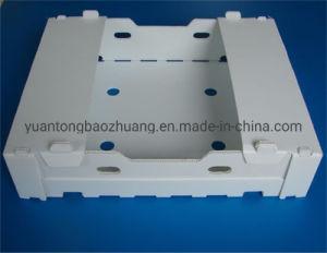2019 China Design Personalizado Caixa de embalagem de plástico rígido de PP