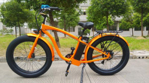 A Montanha de venda quente 48V 750W E Gordura de Neve Mountain Bike