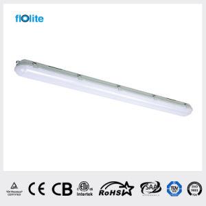 LED de luz Tri-Proof Fs Type