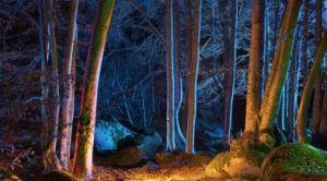 12VのBluetooth RGBW LEDの庭ライトは調節可能なビーム角を防水する