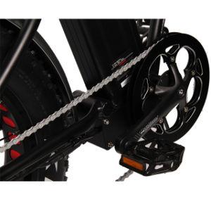 Hulk Fantas-Bike grasa e-bici eléctrica de 350W 20 Fat Ebike