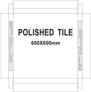 tegels van de Vloer van de Oppervlakte van het Porselein van 600*600mm de Matte van Foshan China