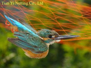 Proteção UV Anti-Bird Net (BN0502~BN1010)