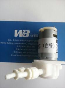 Pompa peristaltica del motore di CC 12