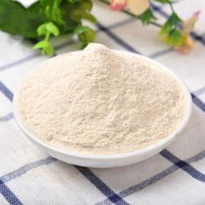 O alho em pó de flocos de alho alho em pó