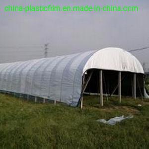 Película branca preto de alta qualidade/6m 8m 10m 150 mícron 180 mícron 190mícron película de plástico preto e branco para cobrir/ Agrícolas/tenda