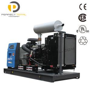 Van de Diesel van de Stroom van de Prijs 250kVA van Competivite Diesel Reeks van de Generator 200kw Generator