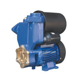 Fundición de hierro de la superficie de presión eléctrico Auto Hogar de la bomba de agua potable