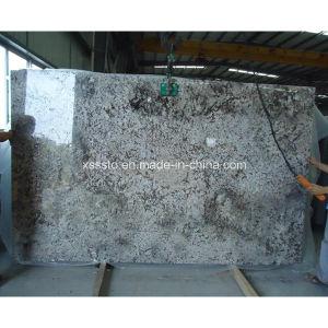 Bianco Anticoのフロアーリングのための石造りのタイルの花こう岩の平板