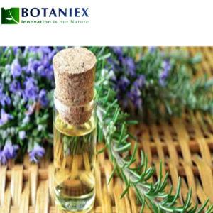 Produits d'huile de romarin pour cheveux Huile Essentielle de Romarin
