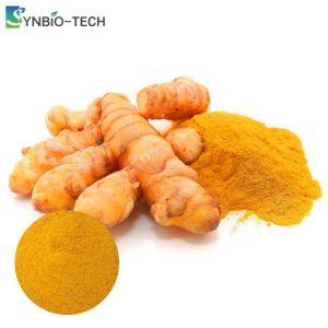 ST006-YCCM2 un 40% de la curcumina Colorante Natural alimentos Pigmentum aditivo sintético de extractos de hierbas de cúrcuma suplemento herbal