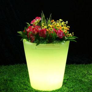 A inovação da Plantadeira Incandescentes Cool Multi Cor RGB LED Lâmpada de humor