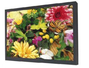 55 polegadas High Bright LED Backlight Monitor LCD