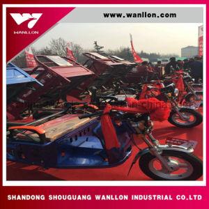 Tres Wheeler 850*1200mm eléctrica Trike triciclo de carga para los adultos