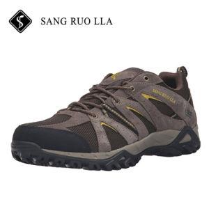 Оптовая торговля мужская в нескольких минутах ходьбы на улице работает для походов обувь