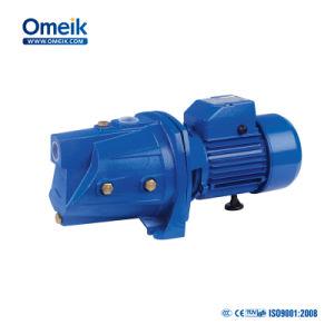 Selbstansaugende Wasser-Pumpe der Jsp Serien-220V 1HP
