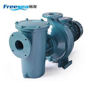 Pompa ad acqua del ghisa della piscina del rifornimento della fabbrica con alta pressione