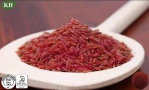 Fornitore rosso naturale Monacolin K della polvere del riso del lievito