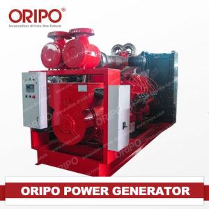 25kw Diesel van Oripo Stille en Open Generator