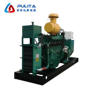 Pulita Nueva Energía 10-1000kw generador de biogás