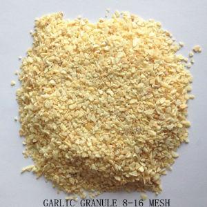 8-16網によって乾燥されるニンニクの微粒かみじん切りのニンニク