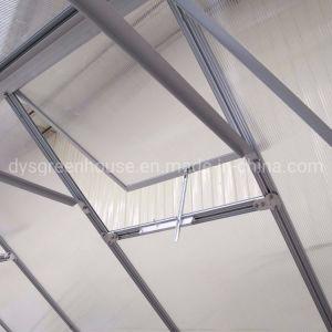 6mm Folha de policarbonato transparente Oco Jardim estufas RDGS0812-6(mm)