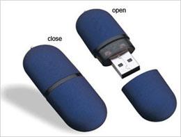 USB Flash Disk (HL-U0006)