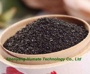 Het Glanzende Kristal van Humate van het kalium (In water oplosbare 100%)