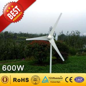 600W Gerador eólico da China Fabricante (Gerador de turbina eólica 90W-300KW)