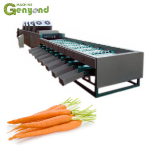 Naranja fruta hortalizas rábano zanahoria raíz de loto de espárragos Lechuga Apio Berro Extractor licuadora el jugo de la línea de procesamiento de la producción de planta de decisiones