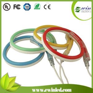 12V / 24V / 110V / 230V LED Neon Flex con chaqueta Colorific