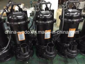 Versenkbare Pumpe des Wasser-Wqd10-15-1.1 mit Niveauschalter