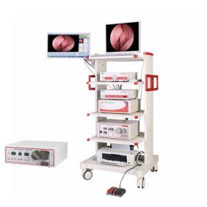 L'anaphylaxie Sinusite aiguë et chronique atrophiante Laryngo-Pharyngitis Full HD Endoscope caméra pour l'otoscope Ent Ent endoscope