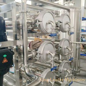 De automatische Apparatuur van de Behandeling van het Water van het Systeem RO Zuivere