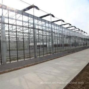 Venlo estufa de vidro inteligente restaurante ecológicos Forlight laboratório biológico e o restaurante ecológicos