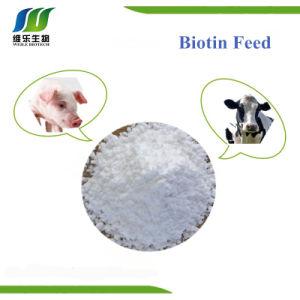 De D-Biotine van de lage Prijs (Vitamine H), het Dierenvoer van de Grondstof (OB 1%)