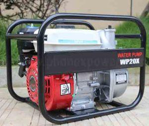 Pompa ad acqua del motore di benzina Wp20 Wp30