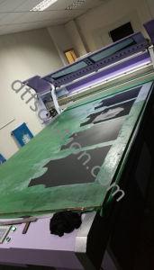 Stampante della tessile di Digitahi