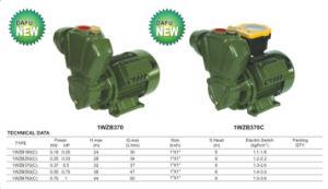 CE approuvé l'amorçage de la pompe à eau automatique (WZB série)