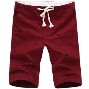 Gli uomini della molla hanno ricamato i quinti pantaloni di scarsità di svago sottile diritto della Centrale-Vita