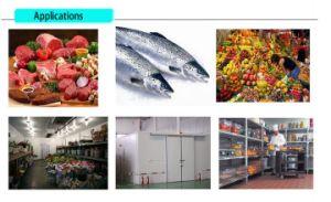 Kühlraum für Fleisch und Rindfleisch