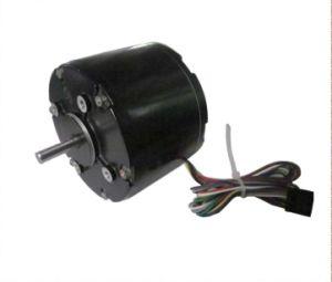 Micromotor eléctrico DC sin escobillas para Power Tool