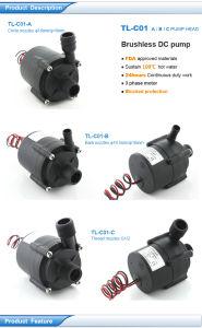 Bomba sem escova Tl-C01 do combustível Cell/DC