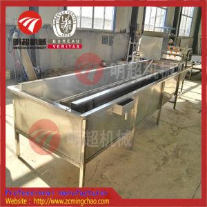 거품 세탁기 과일 세탁기 (1000-1500kg/h)