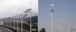 Wind-Energien-Generator der Wechselstrom-Dreiphasenwind-Turbine-100W permanenter
