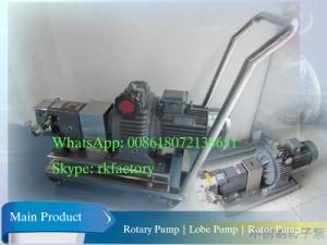Viskosität Liquid Rotary Pump Movable Rotor Pump für Chocolate