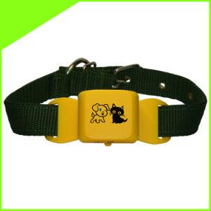 Nuevo dispositivo de seguimiento impermeable Mini mascotas con mascotas Collar Metro interior y busque Disponibles Cctr623