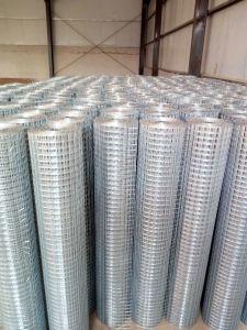 Rete metallica saldata galvanizzata