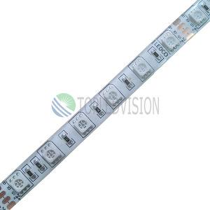Striscia di CC SMD5050 LED di RGB 12V/24V della lampada di lunga vita